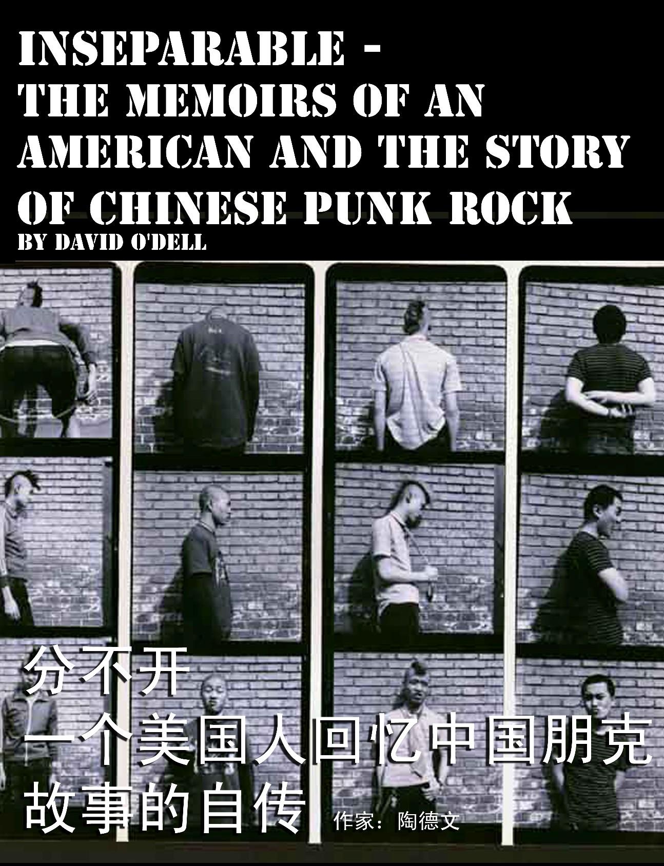 Chinese Punk Rock Book