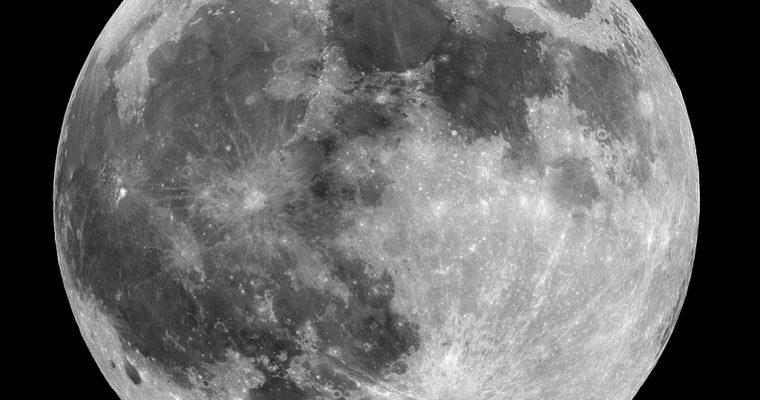 Lunar Dynamics Board